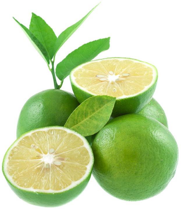 Citrons verts feuilles copie