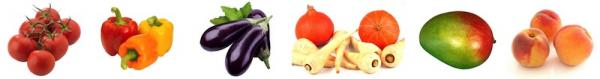 Eplucheur tomfix legumes 1 copie